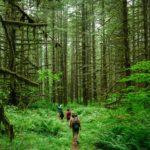 Viaje responsable: Ecoturismo en Europa
